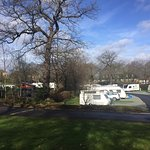 Abbey Wood Caravan Club Site Photo