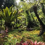 ด้านหน้าทางเดินขึ้นวัดถ้ำผาแด่น จะมีสวนสวยๆให้ชม ใครชอบจัดสวนควรไปชม