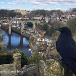 Castle view River Nidd
