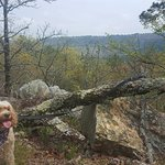 Dog friendly hiking along Sunset Trail