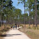 Conservation Park Foto