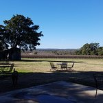the view from William Chris Vineyards