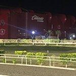 Foto de Estadio Caliente Xoloitzcuintles