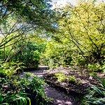 Photo of Jardin Botanique de Marnay sur Seine