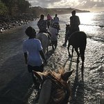 Equus Ridesの写真