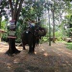 Photo of Sri Lanka Tours