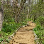 A more rustic nature trail