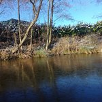 Billede af Peak Forest Canal