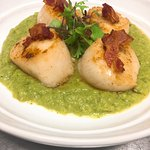 fresh scallops pan seared with coconut milk over cream or broccoli and asparagus, crispy pancett