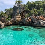 Photo de Paradise Island & The Mangroves (Cayo Arena)