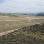 View From Lake Area Of Other Winery Fields