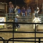 Amateur Rodeo Night