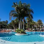 Seaside Palm Beach Bild