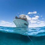 The beautiful Whale Shark boat, Encounter!