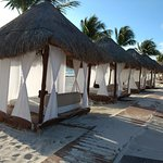 Beach beds that cost 50$US per day (included concierge service)