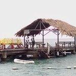 Foto Pigeon Point Beach