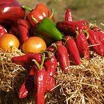 un petit aperçu de nos légumes Ferme de Janou