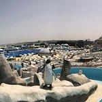 Zdjęcie Ice Land Water  Park
