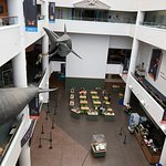 Photo of San Diego Natural History Museum