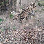Zoo Boise照片