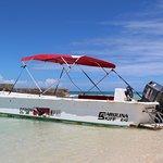 Salt Cay Divers' boat