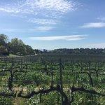 Koehler Winery Foto