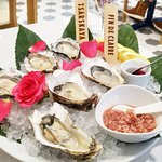Oysters set