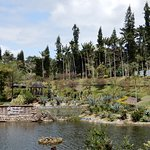 Photo of Southeast Botanical Gardens