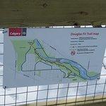 Edworthy Park & Douglas Fir Trail Foto