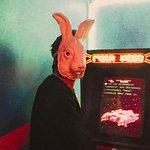 White Rabbit no jogo Stranger Room