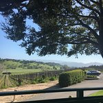 Rusack Winery