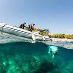 Boat dive to a crystal clear sea