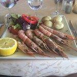 Grill Costa Mar Foto
