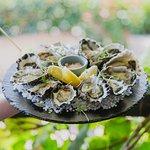 Port Stephens Sydney Rock Oysters