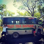Our Billy Tea Safari truck on our #TreeHuggerTravels