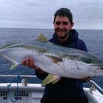 Reef Encounters Fishing Charters Kingfish