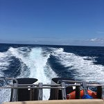 Perfect day out on the Bali Rizio II
