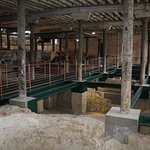 Pompei of Buffalo Trace. The original foundation of the old distillery just recently discovered