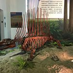樹谷生活科學館照片