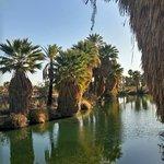 صورة فوتوغرافية لـ Papago Park