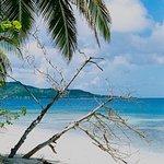 Petit St. Vincent Resort Image