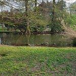 Bilde fra Parco Sempione