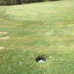 Photo of Golf Yasmine