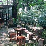 Photo of Clay Studio Coffee In The Garden