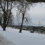 Photo of Queen Victoria Park