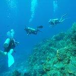 Photo of Palancar Reef