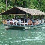 Cruising Loboc river