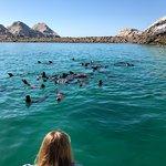 Del Mar Charters照片
