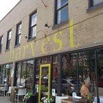 Harvest - Louisville照片