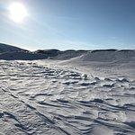 Photo of Arctic Adventures - Day Trips